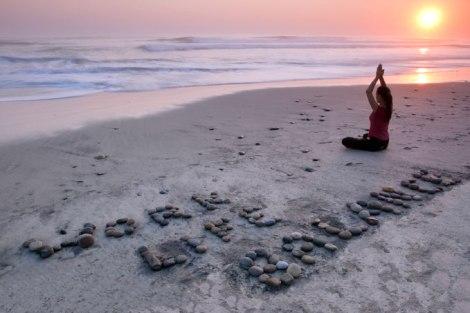 meditate procreate